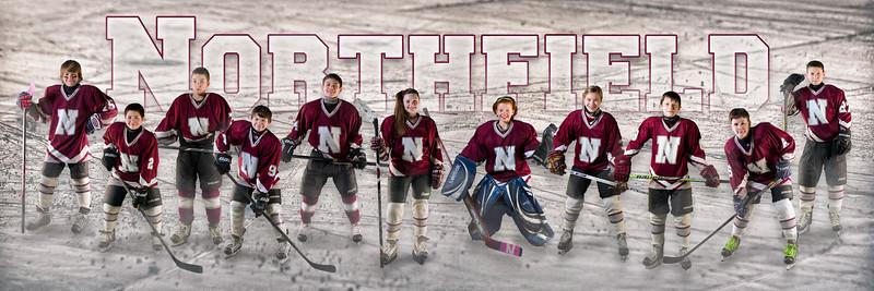 Northfield_Poster2Finalb.jpg