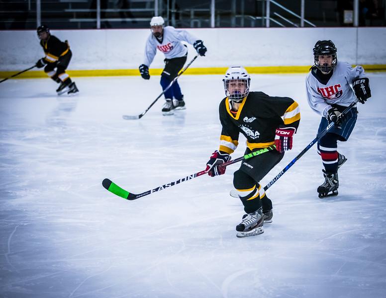 Bruins2-68.jpg