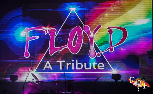 Floyd a Trribute 2017