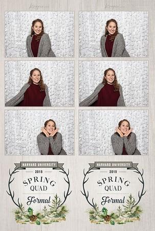 PRINTS - Harvard Spring Quad Formal