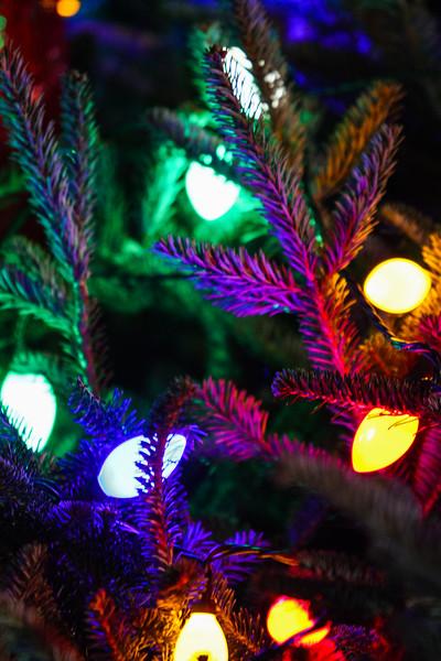 2014 Dec - Harrisburg Christmas Tree Lighting-2654.jpg