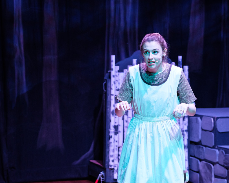 2018-03 Into the Woods Performance 0801.jpg