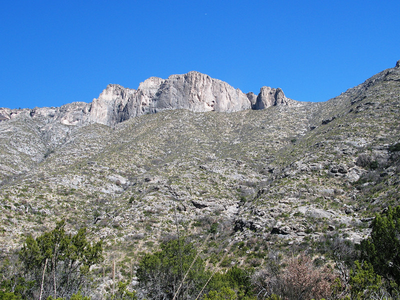 Guadalupe base of limestone relief.jpg