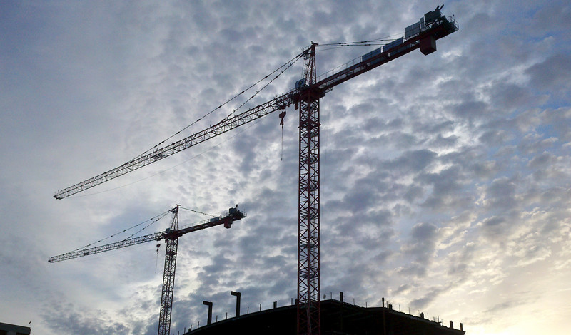 crane_morning.jpg
