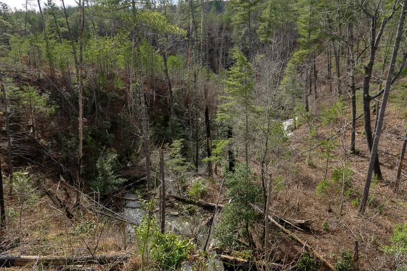 Horseshoe Bend of Russell Creek -- 1,450'