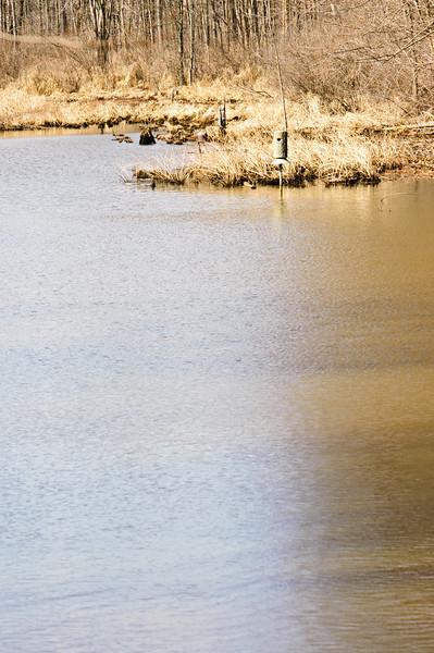 20100320_nature_center_024.jpg