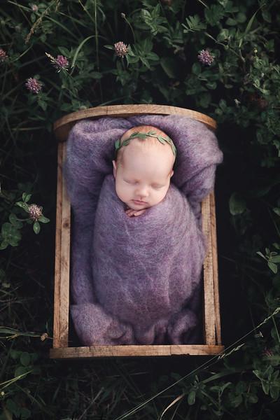 Autumn-Newborn-Low-Resolution370A0250-Edit.jpg