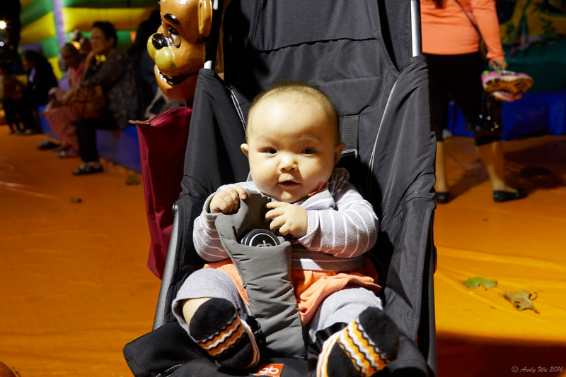 pumpkin__19.jpg