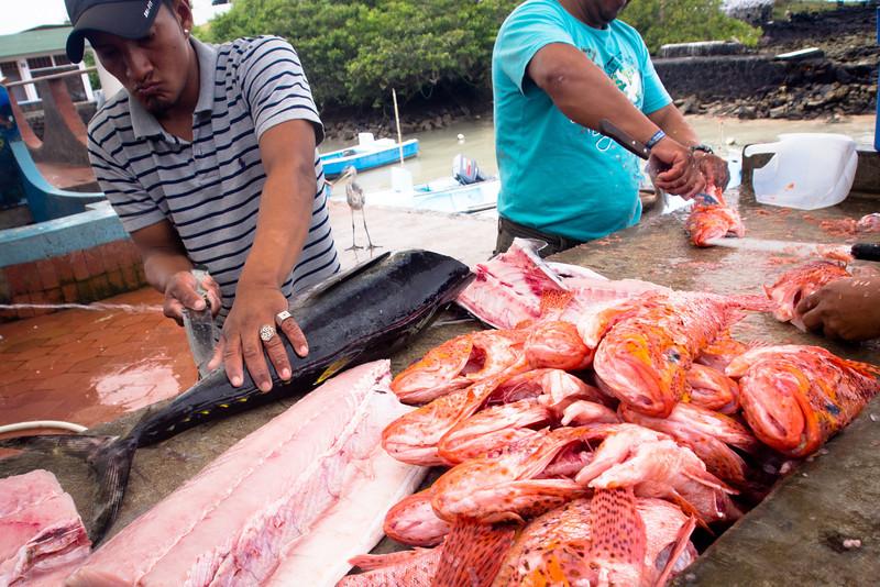 fish market filleting.jpg