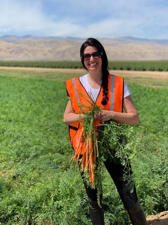 farming carrots in Bakersfield