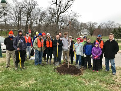 4.7.2018 Spring Grove Tree Planting with Catonsville Tree Canopy Project