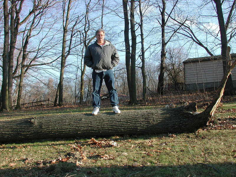 I took this picture of daddy standing on the big broken tree!