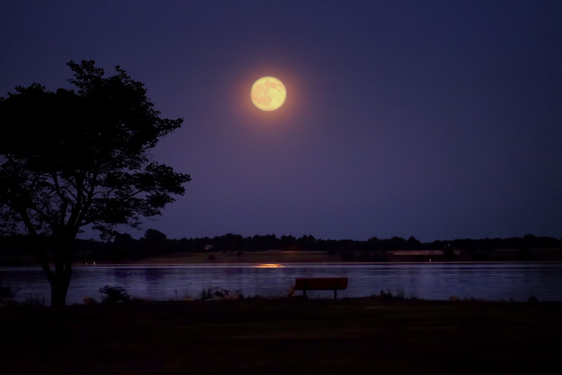 buck moon 2.jpg
