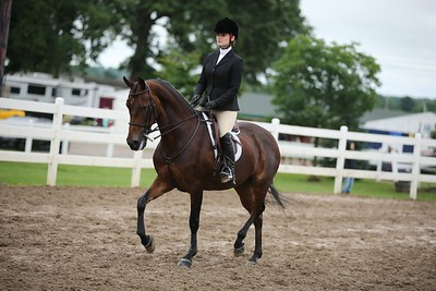 31. Open Hunt Seat Equitation