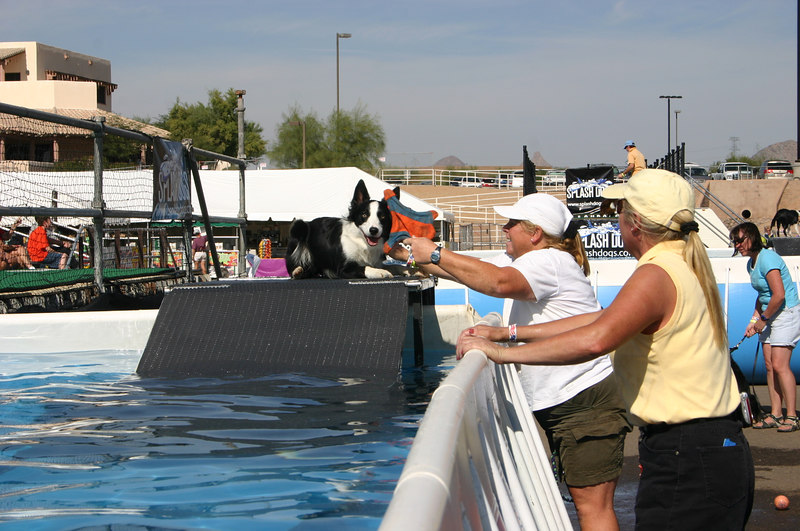Diana W and Cassidy? on practice ramp for dock dogs