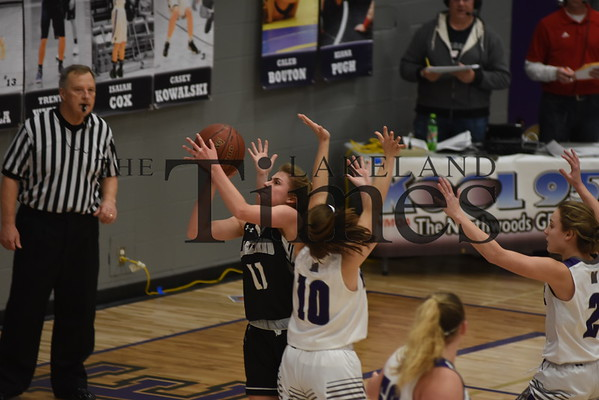 Girls' Basketball at Mosinee 1/11/19