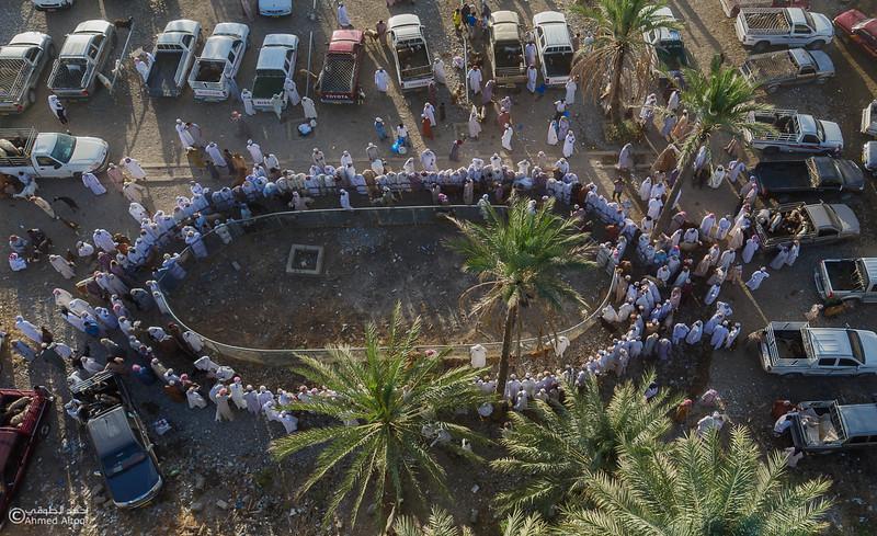 DJI_0013- Alrustq-Habtah- Oman.jpg
