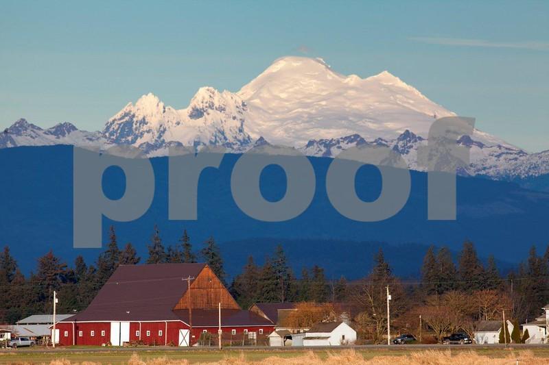 Farm & Mt. Baker 0400.jpg