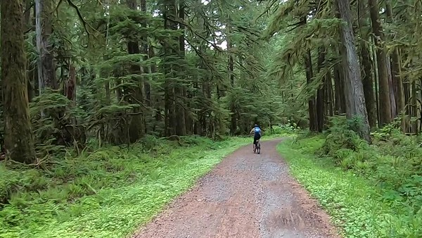 Videos Carbon River Bike Hike