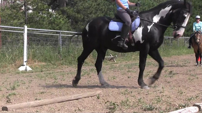 Jennifer Holroyd Clinic Videos August 2015