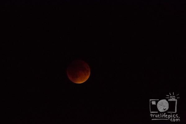{{.Supermoon Lunar Eclipse.Sept27,2015.}}