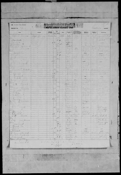 1935 florida census high springs morrison family.jpg