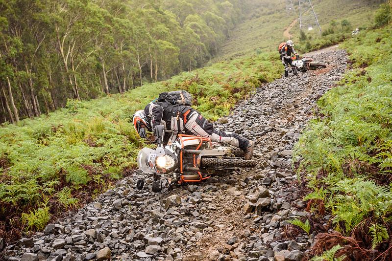 2019 KTM Australia Adventure Rallye (424).jpg