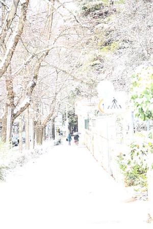 2014/12/31 La neve del 2014