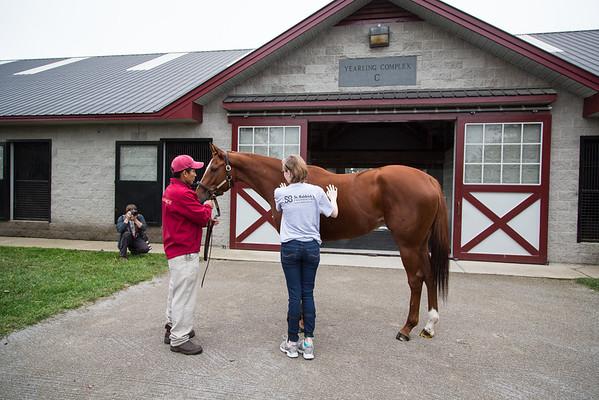 Taylor Made Farm Visit