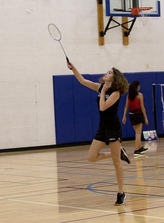 Cactus Badminton