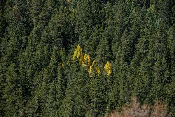 9.22.26 Ouray Silverton Telluride