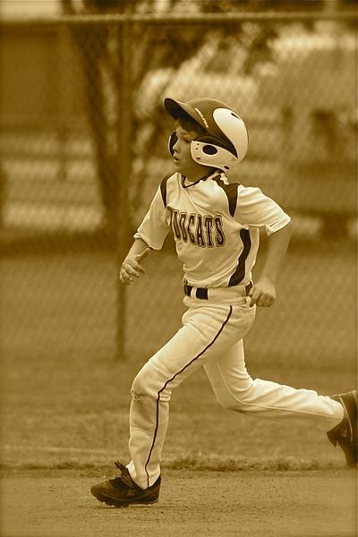 Mudcats Baseball