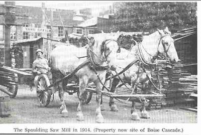 Spaulding Saw Mill 1914.jpg