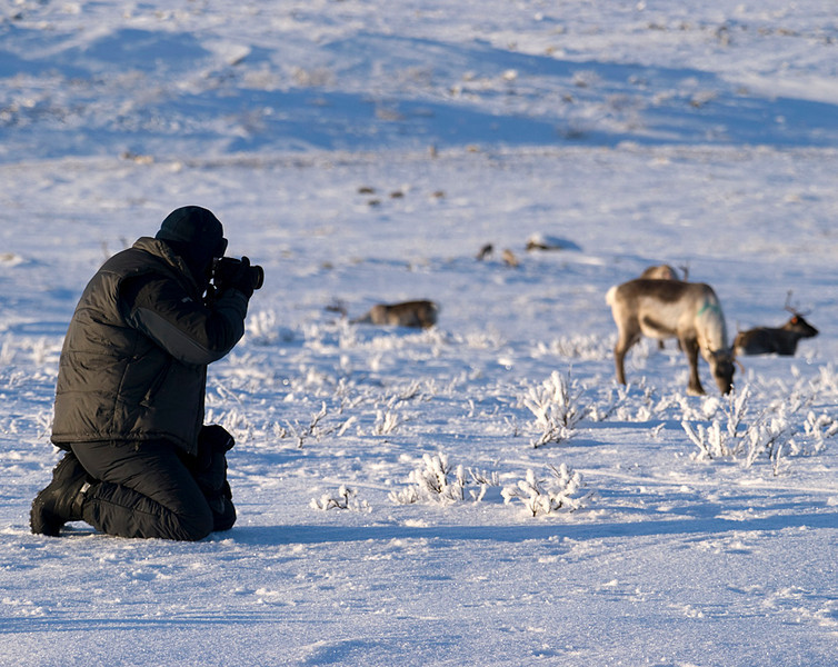 Simon in action capturing the reindeer.