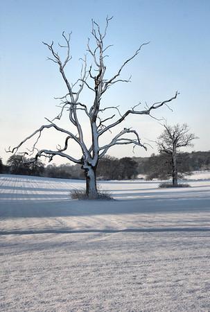 Suffolk snow 2009