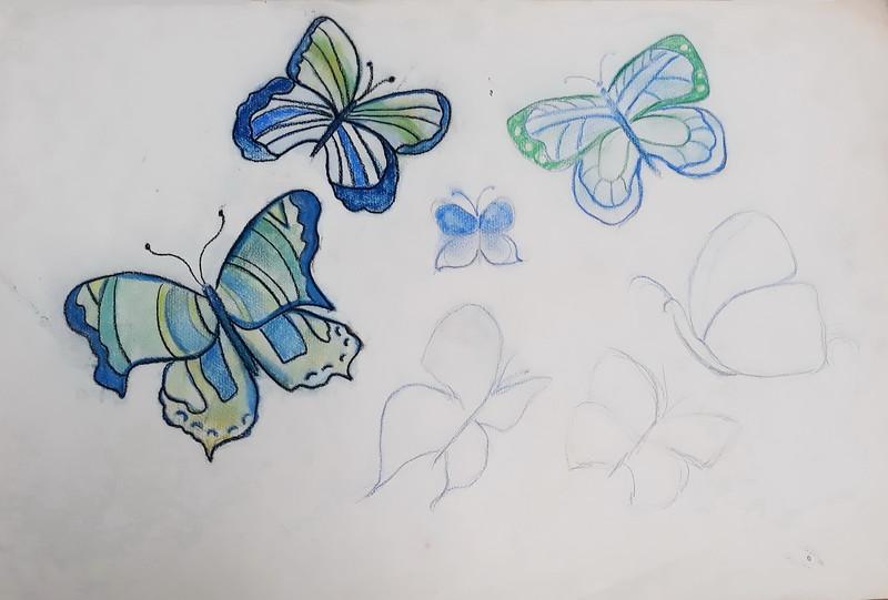 Flutter By.jpg