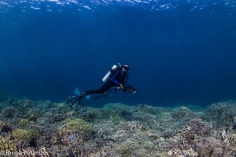 Scuba Diver Photographer