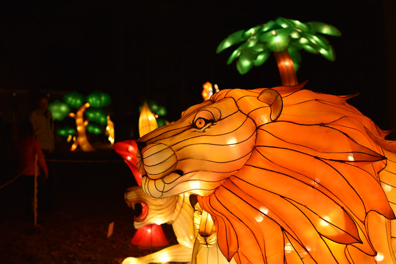 Chinese Lantern Festival-5310.jpg