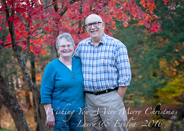 Mom and Dad T Christmas Card