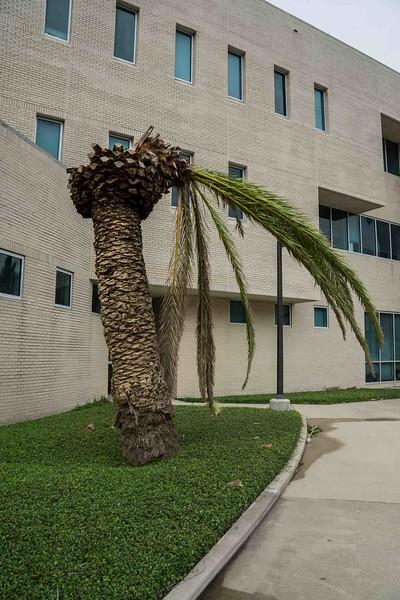 campus-05579.jpg