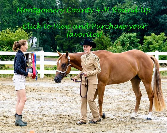 Montgomery County  4-H Round-Up 8/5/17