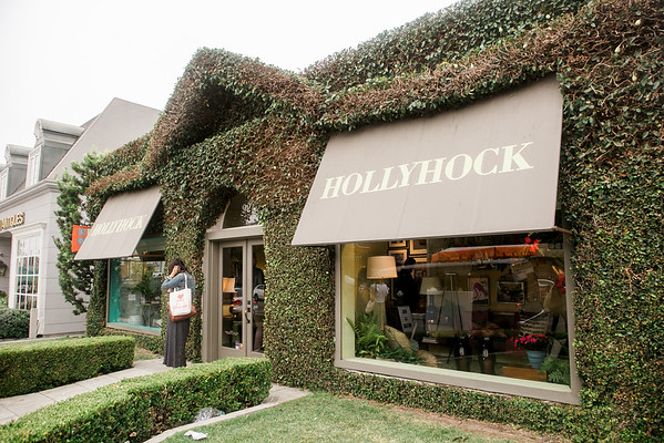 04 Booksigning - Hollyhock