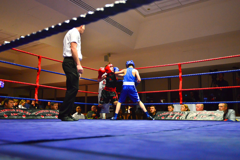 -FIN Nov Stadium of Light Boxing800_26700365.jpg