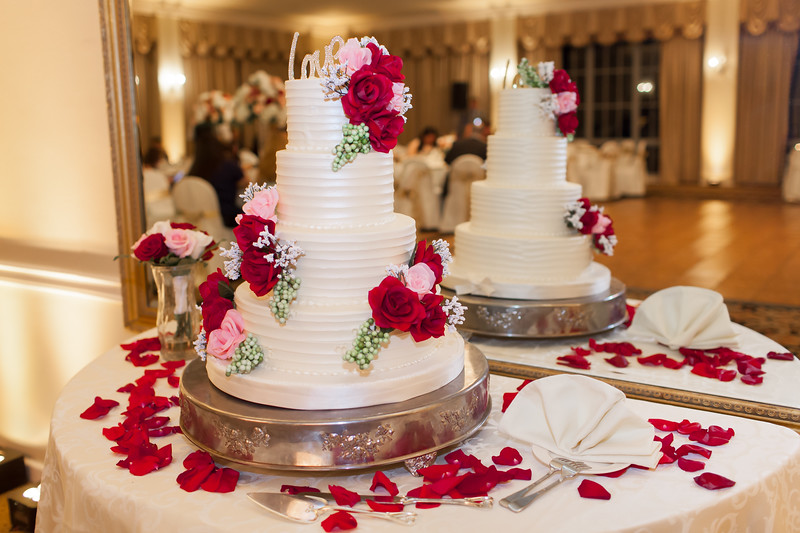 Houston Wedding Photography ~ Norma and Abe-1742.jpg