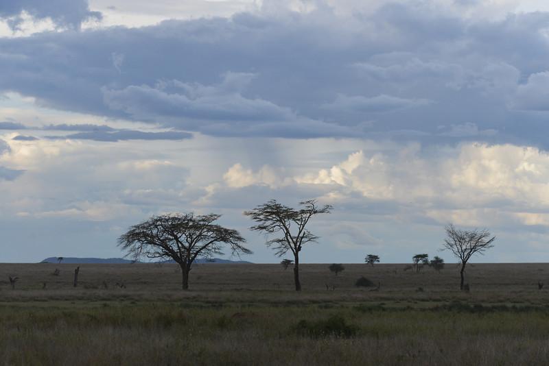 East Africa Safari 283.jpg