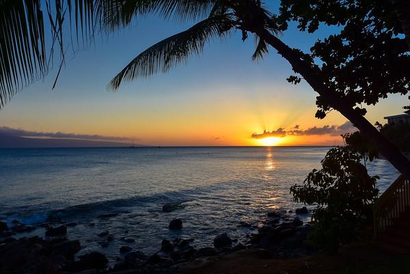 Maui 20th Anniversary