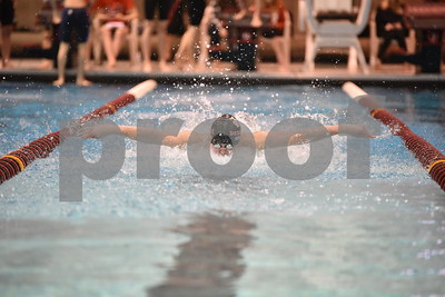2016 Fort Dodge Boys Swimming - District