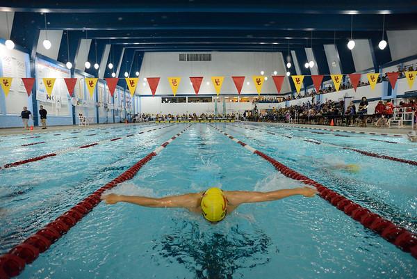 Dinos Swimming 2013