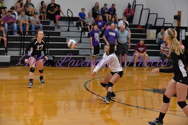 2014 High School Volleyball Season