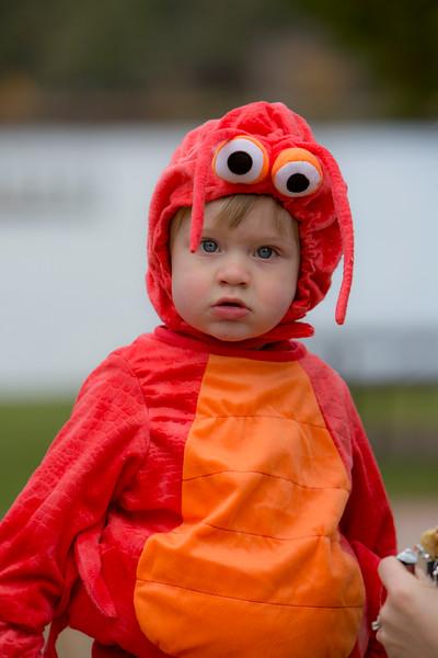 Wyatt's First Halloween 153.jpg